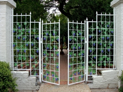 Grape Gates